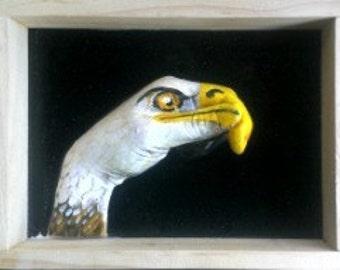 Eagle hand animal