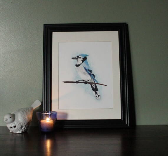 Blue Jay Bird Art Print Bird Print Bird Wall Decor
