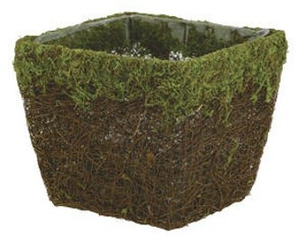 "4"" Square Moss and Vine Pot Cover with Liner Woodland Weddings Garden Decor"