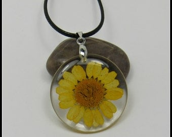 Pressed Yelllow Daisy Necklace