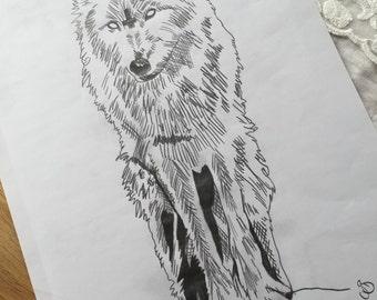 Original Wolf drawing