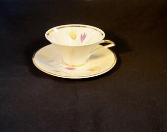 Collectible crocus design cup and saucer Schwarzenbach / Winterling Bavaria 35 54 Sammeltasse from the fifties