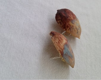 Brown and Sky Blue Pistachio Stud Earrings