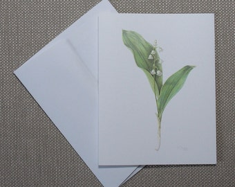 """Lily of the Valley, blank botanical note cards, package of 6, all one design, 5 1/2"""" x 4 1/4"""""""