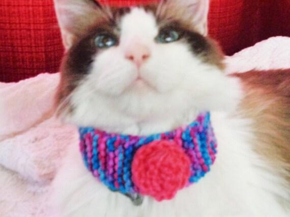 cat collar= knit. blue/pink