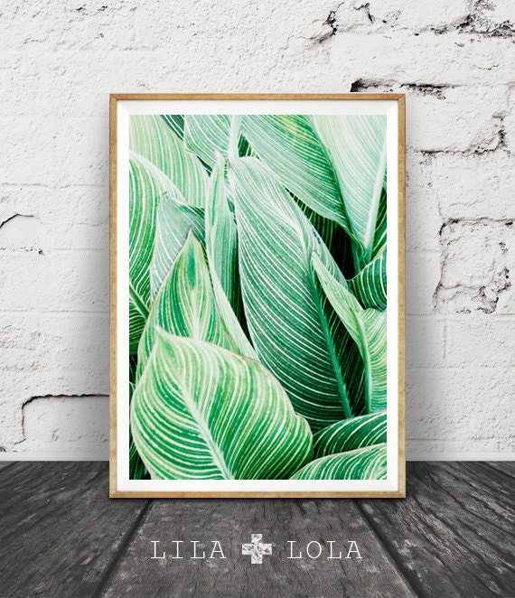Woven Leaves Wall Decor : Tropical leaf print art plant by lilandlola