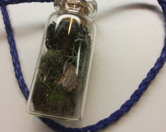 Multi moss & lichen, with petrified wood terrarium necklace