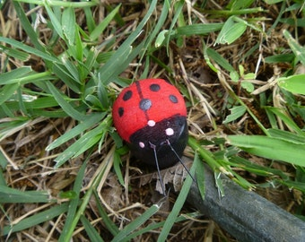 Lady Bug Geocache Container