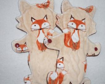 Groovy FOX (Regular)