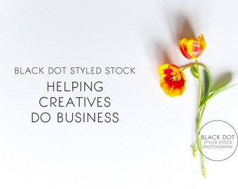 Yellow/orange bright tulip styled stock photo - small business, lifestyle, blog, social media + website headers, flowers, simple, modern