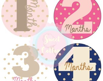 Monthly Stickers, Baby Girl Month Stickers, Bodysuit Stickers, 1-12 Months