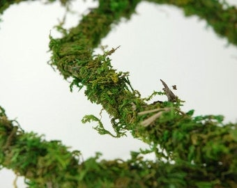 Preserved Moss Vine, Wired, 12 foot