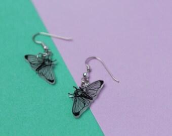 Butterfly earrings / Earrings Butterflies