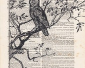 Owl Perched on a Tree Print Vintage Dictionary Art Print Black and White Laser Ink Printed on Vintage Dictionary Pages One of a Kind