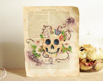"reproduction ""Patched skull"" on page of an old book"
