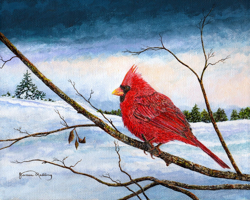 Cardinal Bird Snow Painting Winter Landscape Red