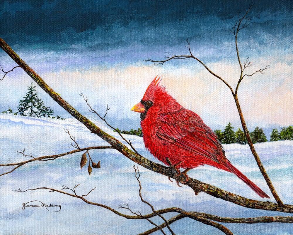 Cardinal Bird Snow Painting Winter Landscape Red