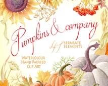 Watercolor clipart - Pumpkins & company, Pumpkin, separate elements, autumn leaves, berries, DIY Clip Art, greeting card