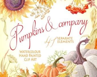 Watercolor Hand painted Graphics, Fall clipart - Pumpkins & company, Pumpkin, Separate elements, Autumn, Fall, DIY Clip Art, greeting card
