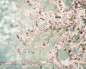 Pastel Wall Art, Canvas, Pink and Teal Photograph, Pink Flowers, Floral Photograph, Bedroom Art