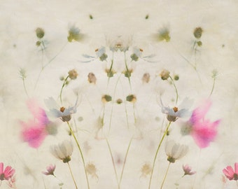Abstract flower photography, bedroom wall canvas, cosmos flowers, pink and cream wall decor, summer photograph, large wall canvas