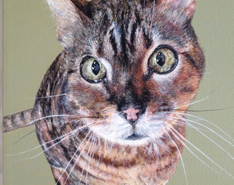 Pet Portraits on canvas commissioned SPRING SALE!!