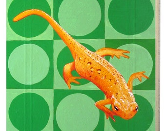 New Hampshire Red Spotted Newt Panel