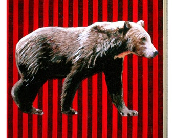 Montana Grizzly Bear Panel
