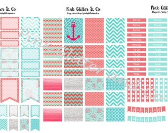 Printable Teal and Coral Kit for Plum Paper Planner