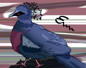 Victoria Crowned Pigeon Print