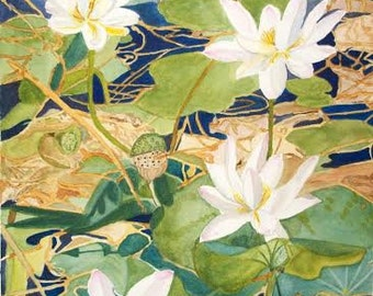 Water Lily Watercolor