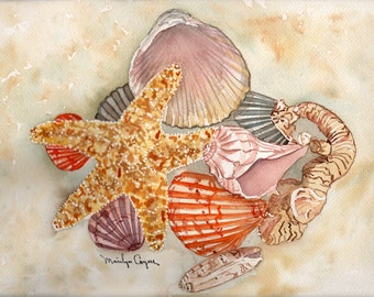 Seashells Watercolor Paintings