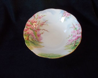 Royal Albert , Blossom Time Pattern, Cereal Bowls, English Bone China
