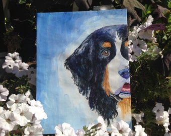 Bermese Mountain Dog Costum Painting