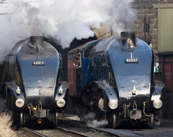 Two A4's at Grosmont