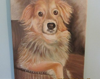 "Pet Portrait - ""Sugarbun""  - sample"