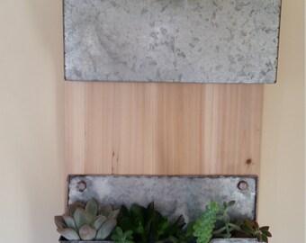 indoor succulent wall decor
