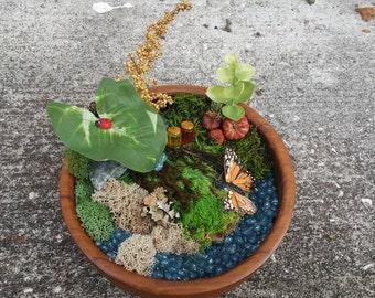 Fairy Garden Bowl - Butterfly