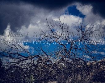 landscape phtography