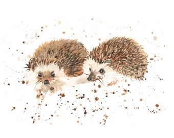Limited Edition Mr & Mrs hedgehog