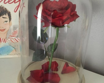 Tale As Old As Time: Beauty and the Beast rose