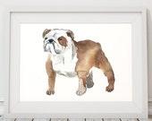 Dog watercolor Bulldog print Cute nursery art ACW57