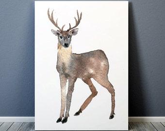 Nursery art Deer print Watercolor poster ACW6