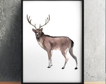 Deer print Watercolor poster Nursery art ACW7