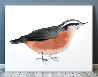 Nuthatch print Nursery art Cute bird watercolor ACW118