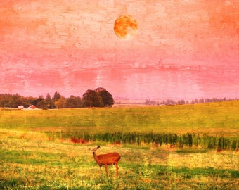Fawn and Farm Field