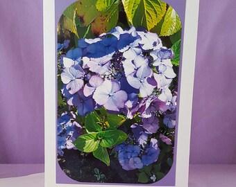 Lavender Hydrangea Floral Photo Greeting Card