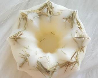 Lemongrass Sage - Soy Wax Tarts - Mini Bundt Cake Tarts - 8 pcs - Wax Melts - Aromatherapy - Infused with Organic Herbs - 4 oz total