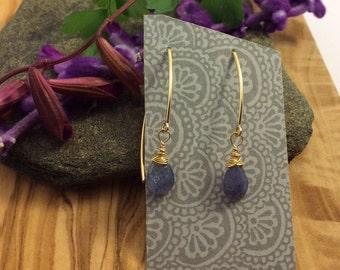 Tanzanite Pear on 14k Gold Filled Earrings