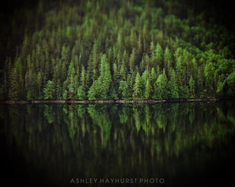 Reflection Trees, Inside Passage, Canada   5x7 Matted to 8x10
